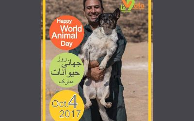 World Animal Day- 2017