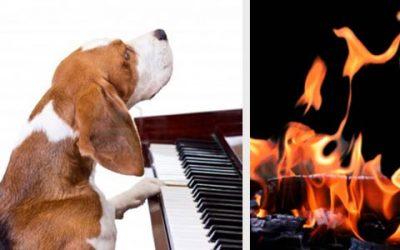 جشن سده ـ رسیتال پیانو