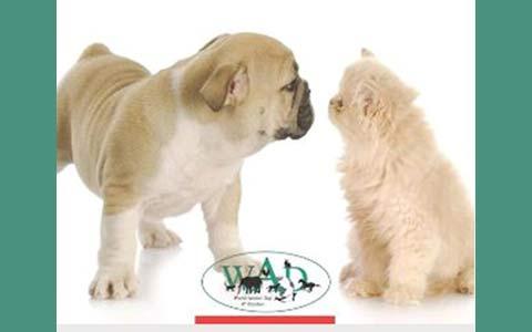 World Animal Day 2014