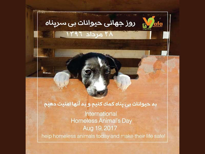 روز جهانی حیوانات بی خانمان ـ 2017