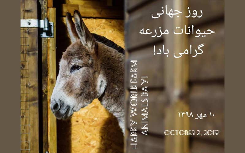 World Farm Animals Day-2019
