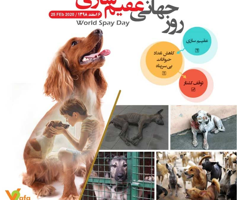 World Spay Day/ February 25,2020